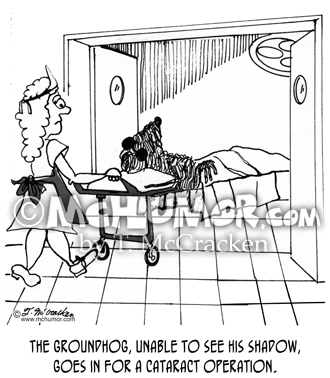 Groundhog Cartoon 1974