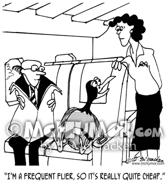 Frequent Flyer Cartoon 3074