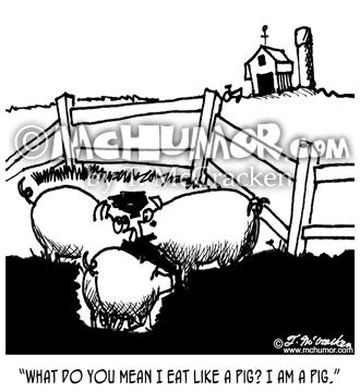 pig cartoons