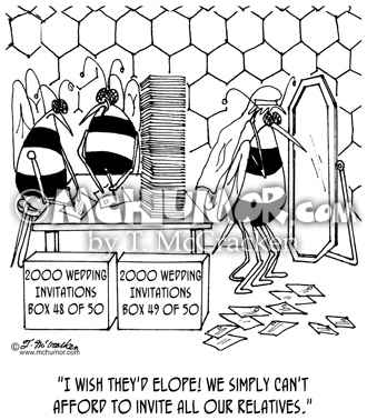 Bee Cartoon 5569
