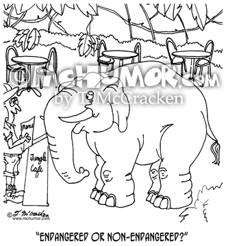 Elephant Cartoon 5937