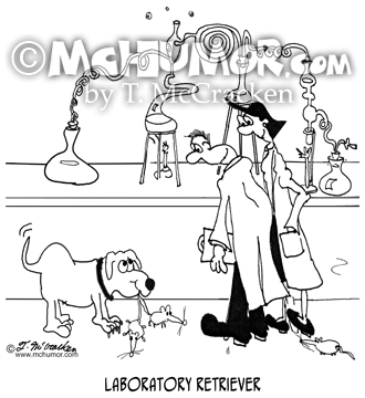 Dog Cartoon 8848