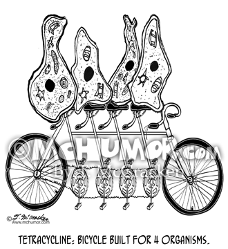 Bicycle Cartoon 8889